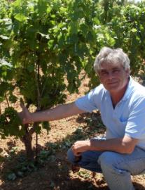 Casano Vini Owner: Giuseppe Casano