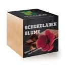-ecocube chocolate flower urban gardening-3