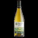 Napolini-White wine Grechetto Napolini-31