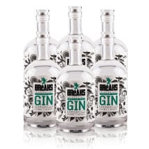 -Set of 6 Breaks Premium Dry Gin Handcrafted Bottle 500ml-21