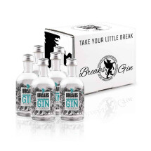 -6x Little Breaks Premium Dry Gin handcrafted bottle 50ml-21