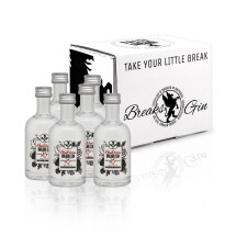 -6x Little Butchers Breaks 25 Gin Handmade bottle 50ml-21