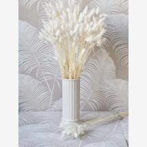 -Lagurus white 1 bunch-21