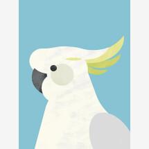 -Parrot by Dan Hobday Premium Poster-21