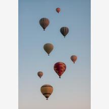 -Hot Air Balloon Flock by AJ Schokora Premium Poster-21