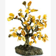 -Amber Tree-23