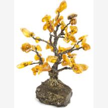 -Amber Tree-21