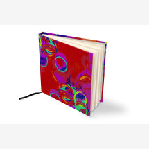 -As a supplement to the notebook writing and figures in the square 15 circle in red-20