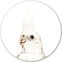-Groovy Magnets Parakeet Magnetic Sticker-21
