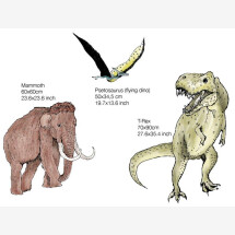 -Prehistoric Set of 3 Wall Stickers-21