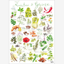 -Herbs / spices poster-21