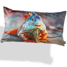 -Cushion GUANA 35 x 60 cm from Padconcept-21