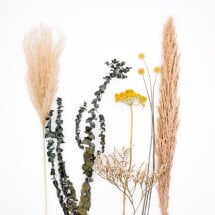 -Yellow dried flower set-21