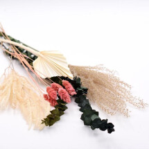 -Dried flowers set coral-21