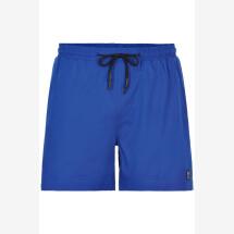 -Anerkjendt royal blue Akshark swim shorts-2