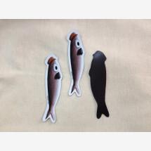 -Zé Carlos sardine magnet-20