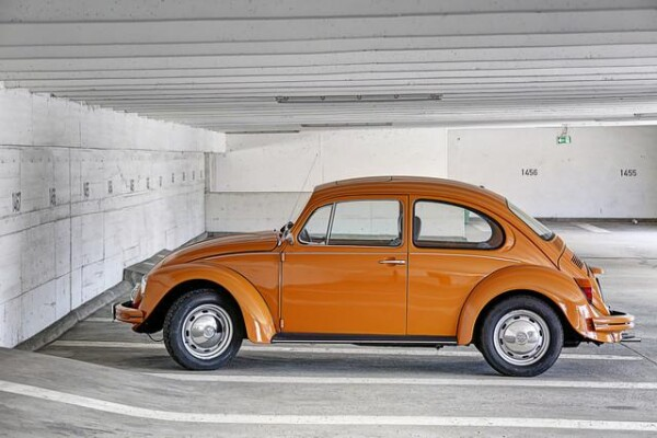 Beetle by Michael Belhadi | Photocircle