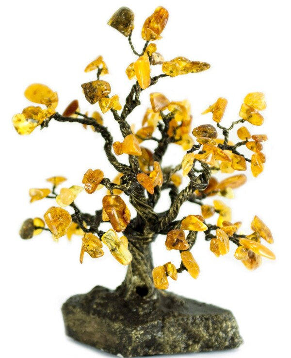 Amber Tree   BalticBuy