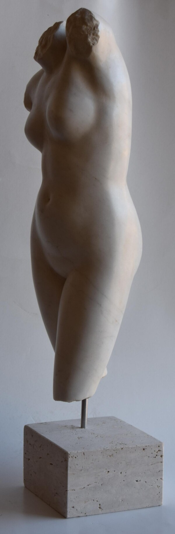 Female Torso-Venus2  in white Carrara marble | Todini- sculture d'arredamento