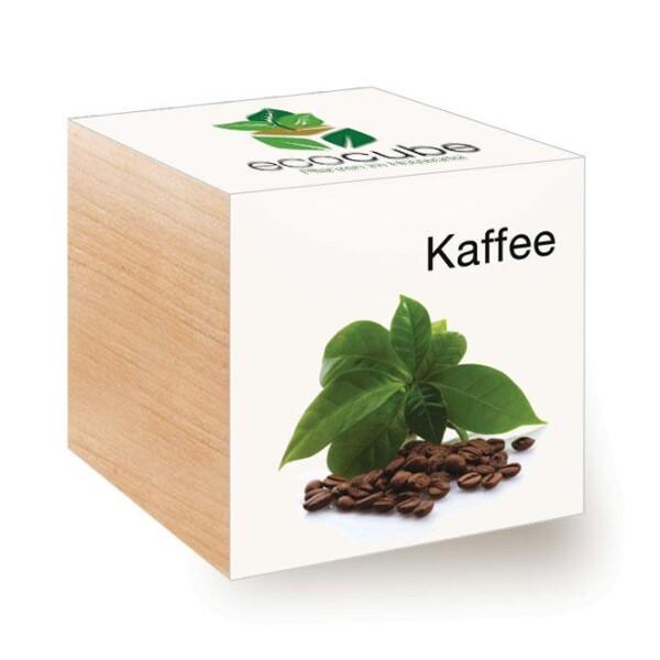 ecocube coffee - urban gardening   LOOK! Conzept Store