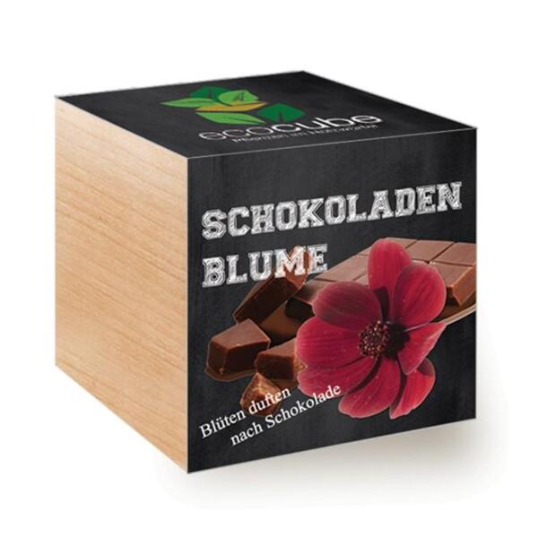 ecocube chocolate flower - urban gardening | LOOK! Conzept Store