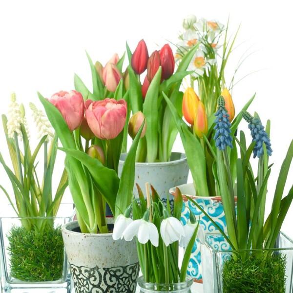 Artificial flowers - hyacinths | Das Lädchen