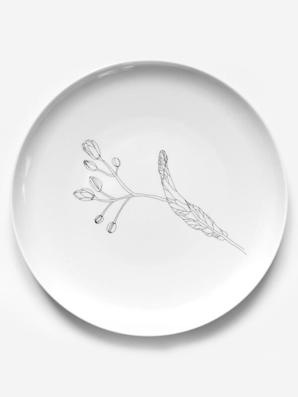 Porcelain plate with linden tree design | Lipa store