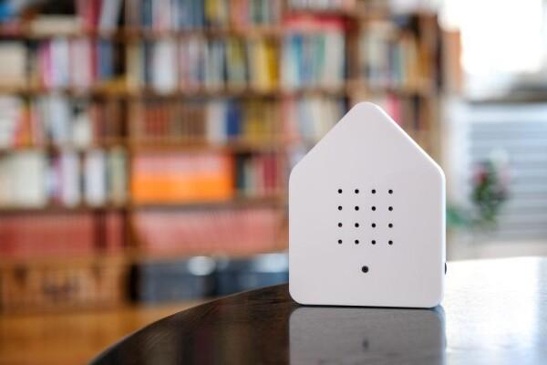 Twitter box motion detector white | 1st Tannendiele BlumenGut