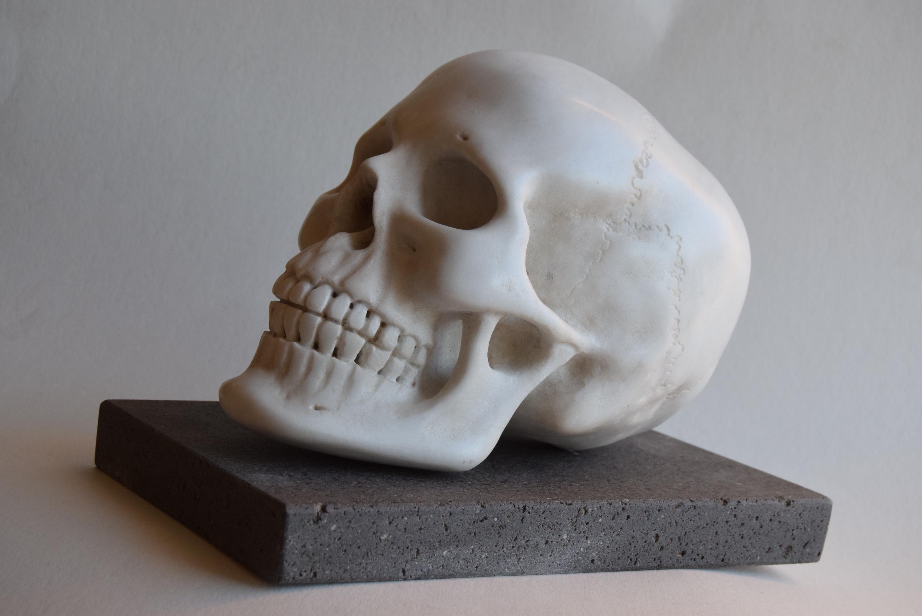 Menschlicher Schädel - weißer Carraramarmor