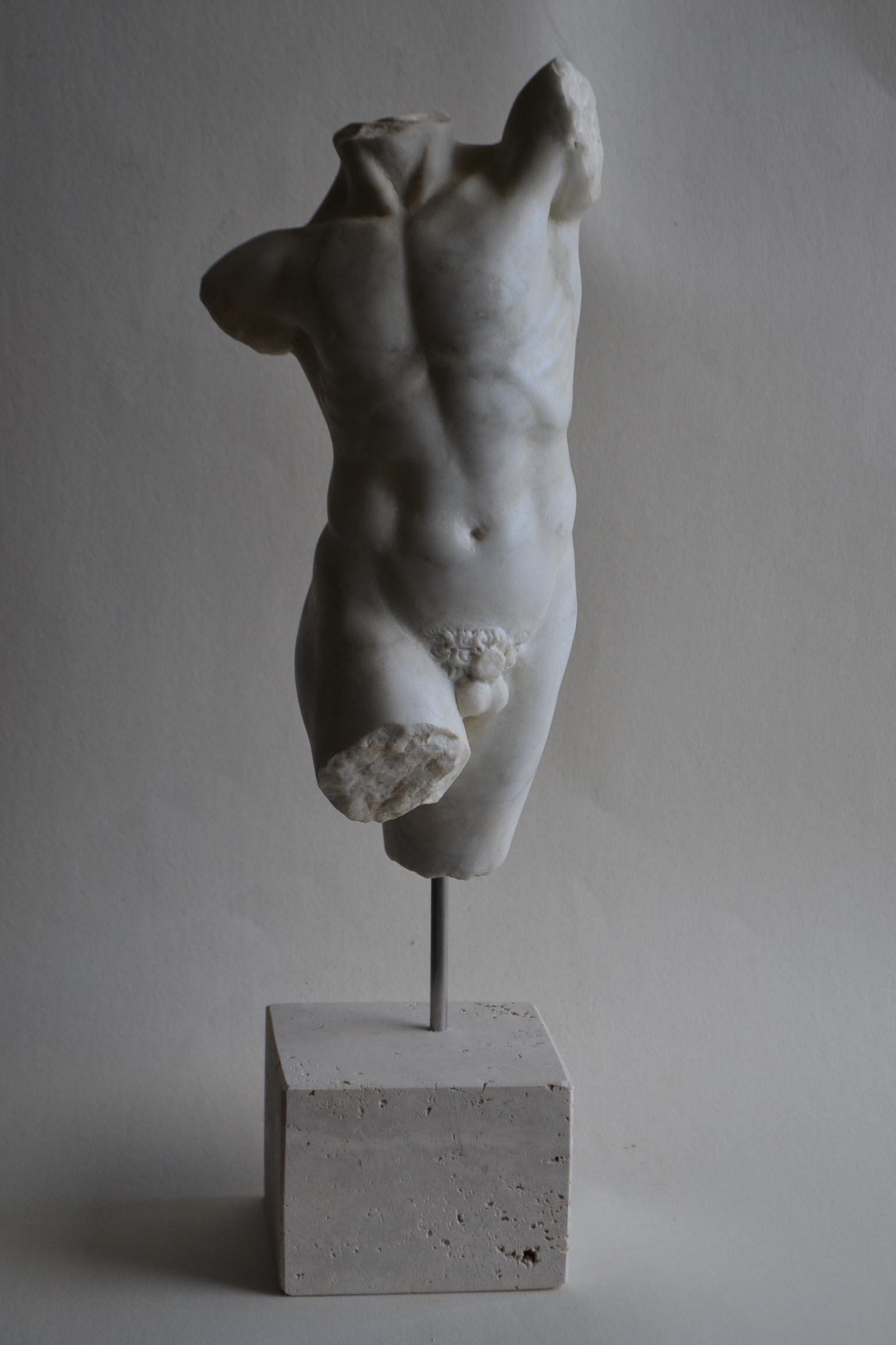 Männlicher Torso 5-weißer Carrara-Marmor