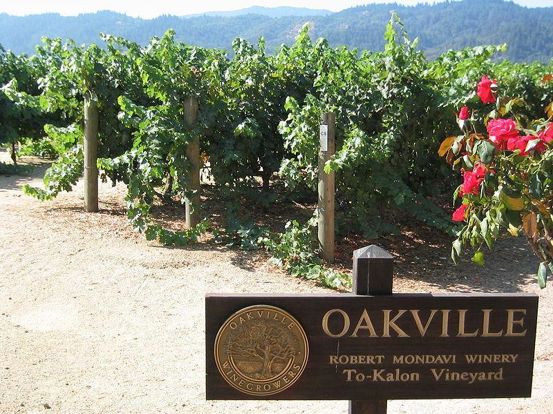 Weinprobe: Frühlingserwachen, einschl. leckerer...