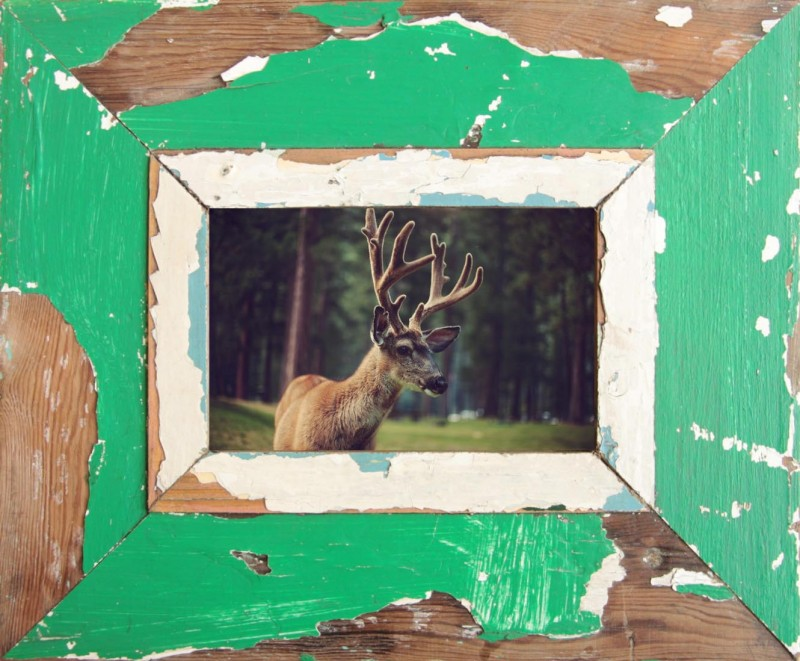 Young Buck´ - A6 (29 x 23 cm)